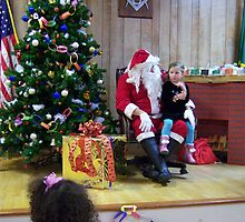 Alki Lodge Santa 2285 by Kristin Bennett