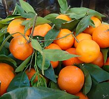 Oranges anyone for oranges... Corfu has loads!! by fruitcake