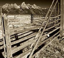 Corral by Dennis  Roy Smigel
