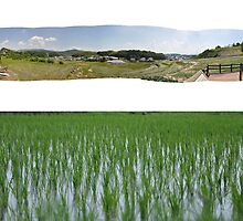 Middle of Nowhere - Diptych by gorrmanlee