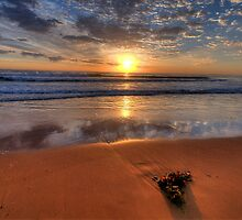 Alone Again Naturally  - Newport Beach, Sydney - The HDR Experience by Philip Johnson