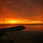 Cottesloe Beach by Andrew  Semark
