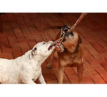 Friendship is Sharing a Rope Photographic Print