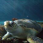 Under the sea by Jay Spadaro