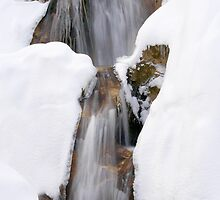 Snow Flow by Walter Quirtmair