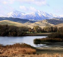 Mount Diablo by Kimberly Palmer