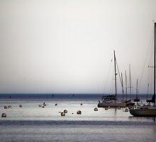 Yachts II by Atlantic Dreams