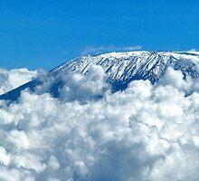 Kilimanjaro by Adri  Padmos