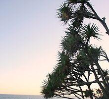 Beach Scene by Jay Spadaro