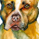 Pit Bull by Acey Thompson