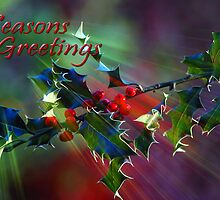 Seasons Greetings..... by Stephie Butler