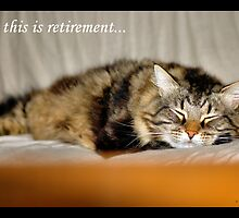 SO THIS IS RETIREMENT by Cheryl Hall