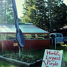 """World's Largest Purple Spoon . . . Maybe"" by Susan Russell"