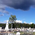 Rosewood cemetery, Queensland by Margaret  Hyde