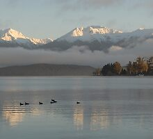 Dawn over Lake Te Anau, New Zealand by Phil Hirst