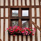 Window at Troyes, France by MaluC