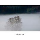 stille (silence) by Erwin G. Kotzab