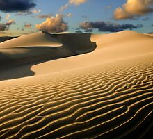 Maspalomas Dunes by Alex  Bramwell