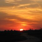 Sun Setting Over The Country Road by Linda Miller Gesualdo