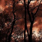 fire by melissa cottrell