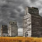 Montana Grain Elevators by James Larson