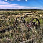 Old Farm Machinery by James Larson
