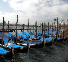 Covered Gondolas by Kralington