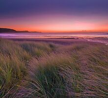 Freshwater East by Mark Robson