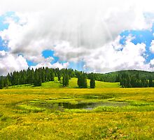 Alpine plateau in vivid colors. by demigod