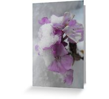 Fragile Hold... Greeting Card