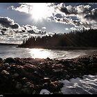 Beach Drama by Lyana Votey