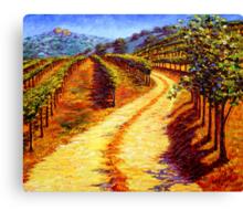 Sonoma Vineyard Canvas Print