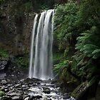 Hopetoun Falls by Marion  Cullen
