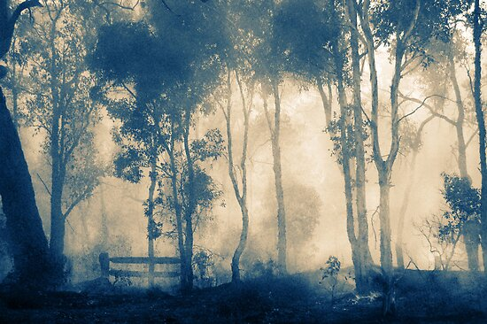 After The Fire - Frankland by Eve Parry