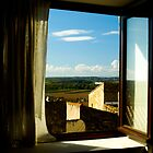 Out a Window in Southern France by pdgoodman