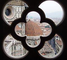 Through the window I spied... by Christine Oakley