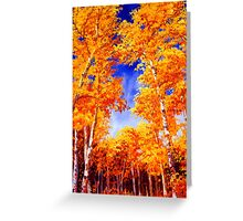 Sky View From the Aspen Forest Greeting Card