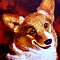 Welsh Corgi by sesillie