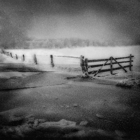 Snow fall by Manfred Belau