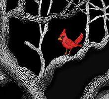 The bandit Cardinal Returns to southern Arizona mesquite tree by James Lewis Hamilton