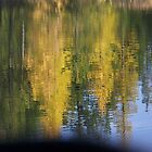 Golden Reflections   by © Betty E Duncan ~ Blue Mountain Blessings Photography