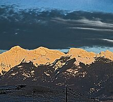 Late Afternoon Sun on the Missions 2, HDR by Bryan D. Spellman