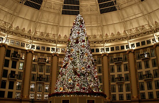 Christmas Tree at West Baden by Sandy Keeton