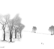 Winter Scene by Jo Newman
