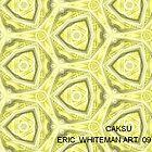 ( CAKSU )  ERIC WHITEMAN  by ericwhiteman