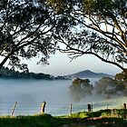 ~ Nairne ~ Adelaide Hills ~ II by LeeoPhotography
