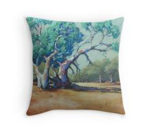 Dry Sandy Riverbed, Silverton Throw Pillow