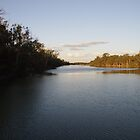 Murray River sunset by happy3741