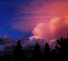 Blushing Clouds by Nicole DeFord