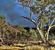 Central Australian outback storm by Ausgirl60